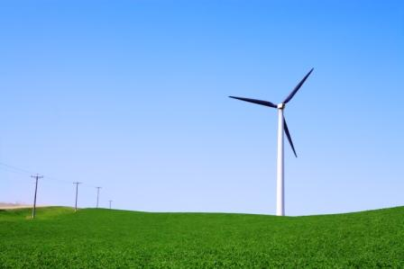 Wind turbine against green field with utility poles.