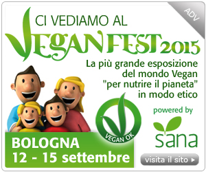 cubo-veganfest3