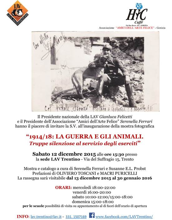 guerra e animali