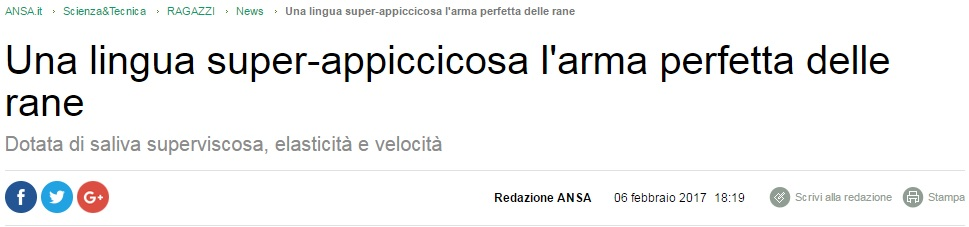 ansa4