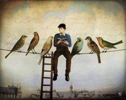 Uomo-che-legge-su-un-filo-con-uccelli