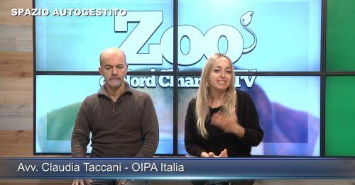 oipa2